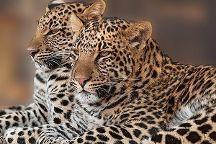 African Paradise Safaris, Nairobi, Kenya