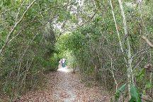 Arabuko-Sokoke Forest, Gede, Kenya