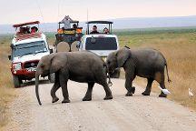 Bush Thorns Adventures and Safaris