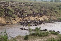 Expedition Kenya Safari