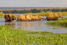 Nature Exploration Safaris, Nairobi, Kenya