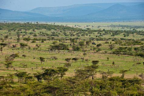 Mara Naboisho Conservancy, Narok, Kenya