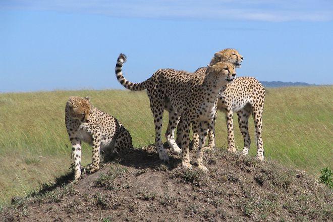 Asili Adventure Safaris, Nairobi, Kenya