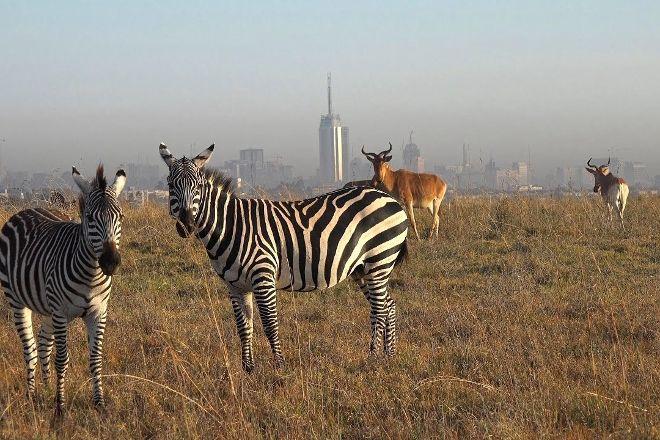 City Sightseeing Tours, Nairobi, Kenya
