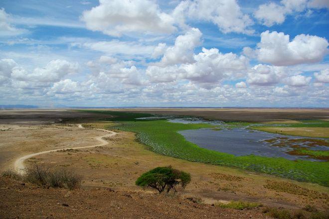 Observation Hill, Amboseli National Park, Kenya