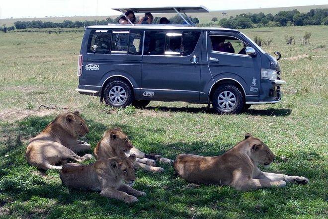 Sunstrip Africa Safaris, Nairobi, Kenya