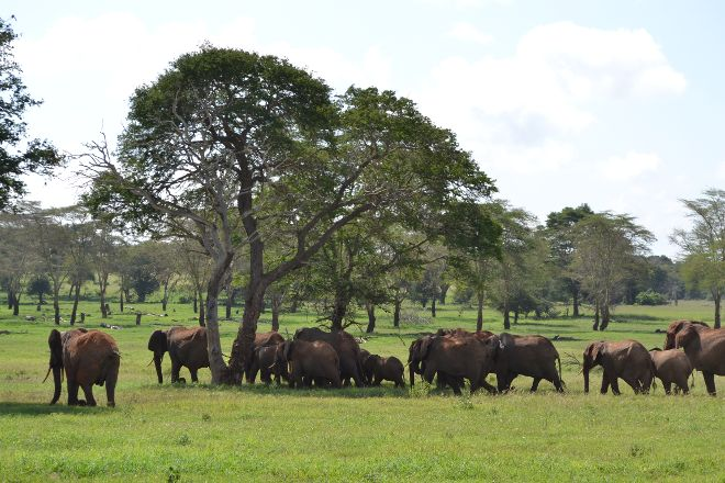 Taita Hills Wildlife Sanctuary, Tsavo National Park West, Kenya