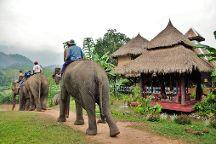 Elephant Village Sanctuary & Resort