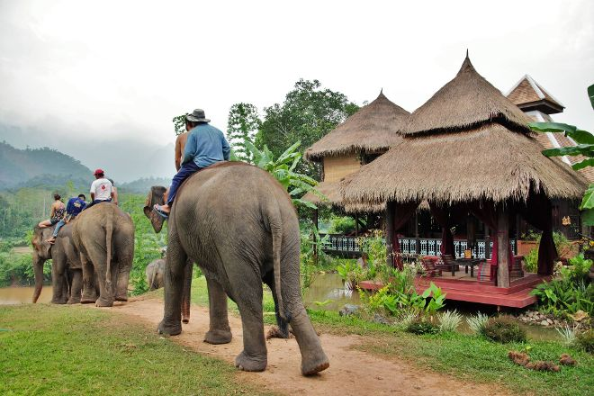 Elephant Village Sanctuary & Resort, Luang Prabang, Laos