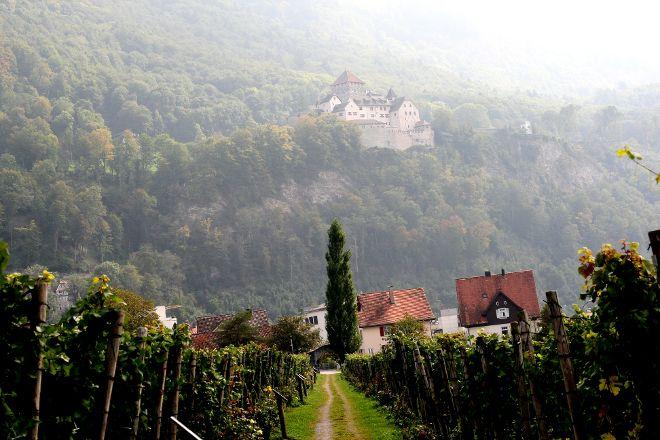Wine Cellars of the Prince of Liechtenstein, Vaduz, Liechtenstein
