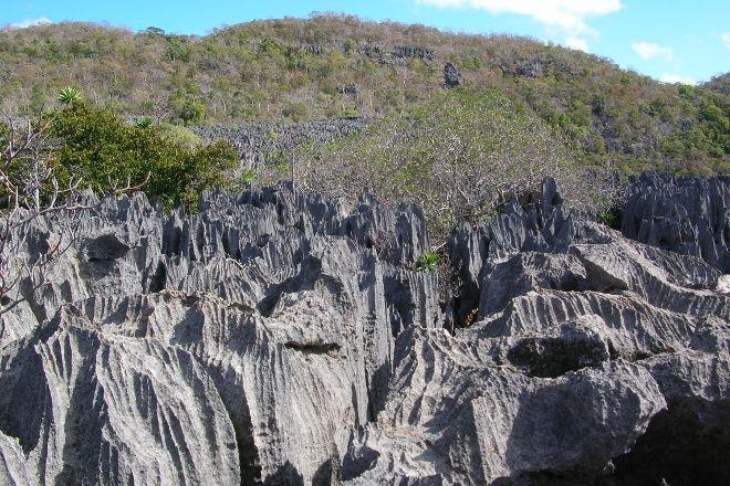 Ankarana Special Reserve, Antsiranana (Diego Suarez), Madagascar