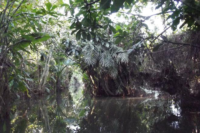 Nahampoana Reserve, Tolanaro, Madagascar