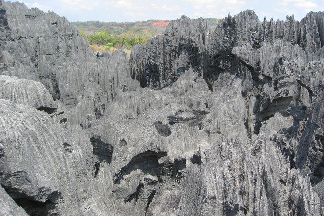 Tsingy de Bemaraha Strict Nature Reserve, Tsingy de Bemaraha National Park, Madagascar