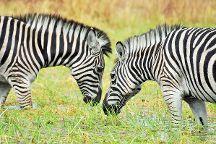Kuti Wildlife Reserve, Salima, Malawi