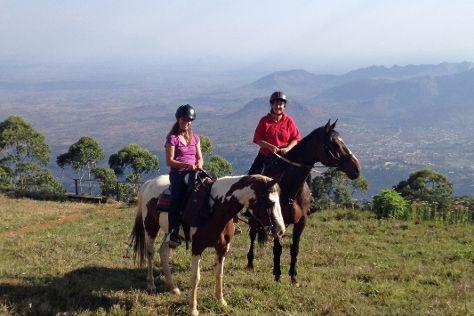 Plateau Stables, Zomba, Malawi