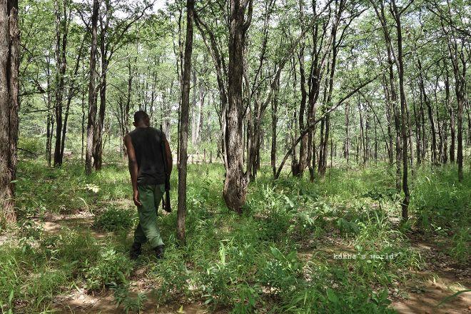 Mwabvi Game Reserve, Nsanje, Malawi
