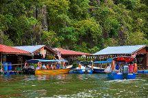 Langkawi Mangrove Tour by Hasfary Travel & Tours