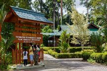 Sepilok Orangutan Rehabilitation Centre, Sepilok, Malaysia