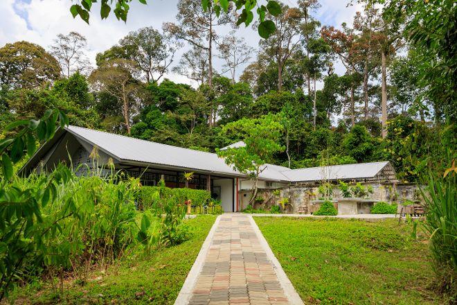 Bornean Sun Bear Conservation Centre (BSBCC), Sandakan, Malaysia