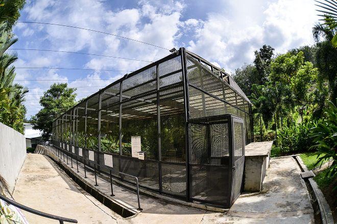 Kechara Forest Retreat, Bentong, Malaysia