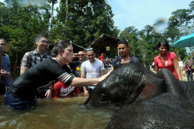Kuala Gandah National Elephant Conservation Centre, Pahang, Malaysia