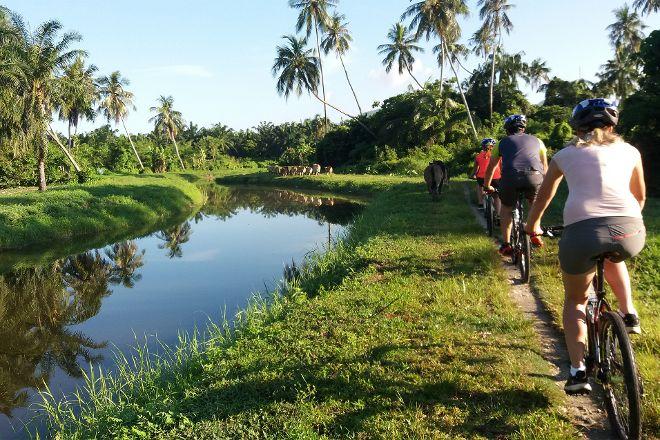 Matahari Cycle Tours & Travel Sdn. Bhd., George Town, Malaysia