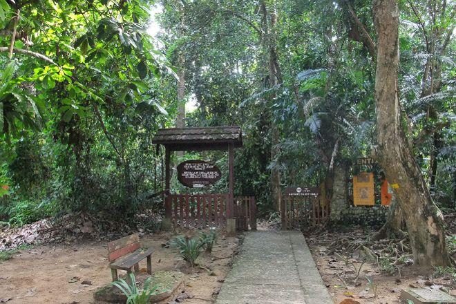 Taman Negara National Park, Pahang, Malaysia