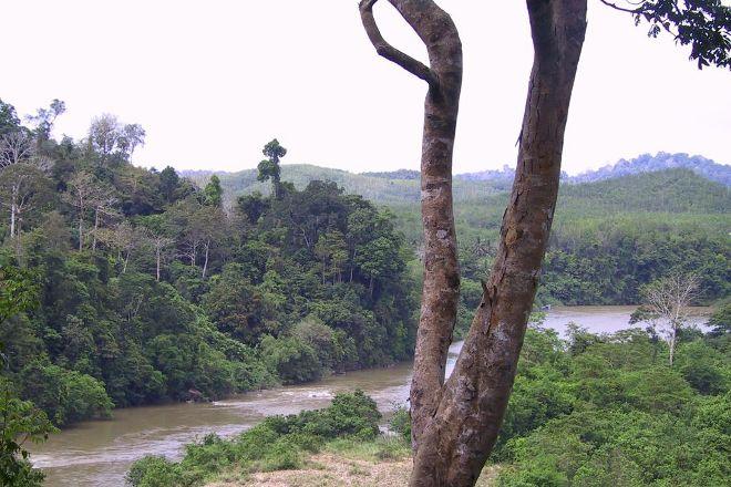 Taman Negara National Park, Kelantan, Malaysia
