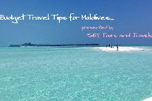 S&Y Tours and Travel