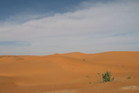 Trarza Region