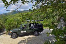Ebony Forest Reserve, Chamarel, Mauritius