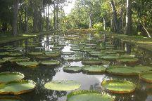 SSR Botanic Garden