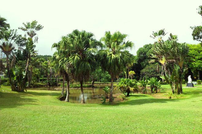 Curepipe Botanic Garden, Curepipe, Mauritius