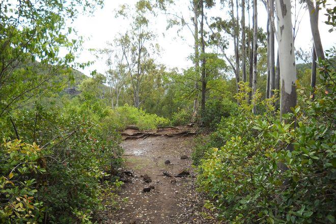 Nature Trails Mauritius, Quatre Bornes, Mauritius
