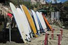 WildMex Surf and Adventure