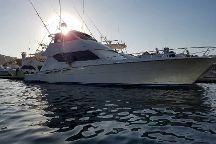 Armada Sportfishing