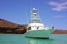 Cabo Yacht Club