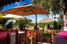 Culinary Tours Mexico
