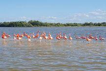Homys Tours, Playa del Carmen, Mexico