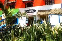 Lunazul Surf School and Shop
