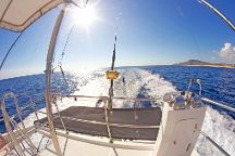 M Sport Fishing Cabo, Cabo San Lucas, Mexico