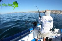 Mahi Fishingcharters
