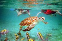 Pezcaribe Ocean Adventure Tours