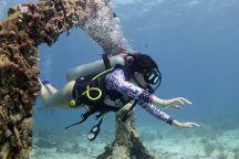 Pocna Dive Center