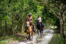 Rancho Baaxal horse riding