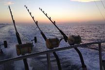 Stimulator Sportfishing - Day Tours