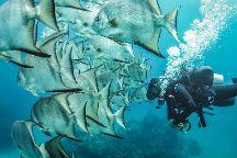 XTC Dive Center