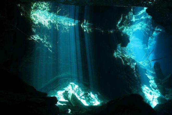 Blue Motion Divers, Playa del Carmen, Mexico