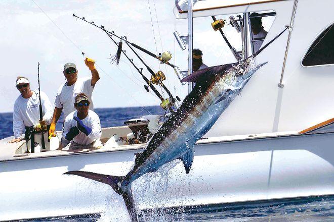 Cabo Playa Sport Fishing, San Jose del Cabo, Mexico