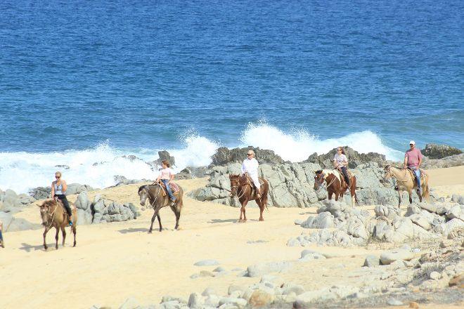 Carisuva, Cabo San Lucas, Mexico